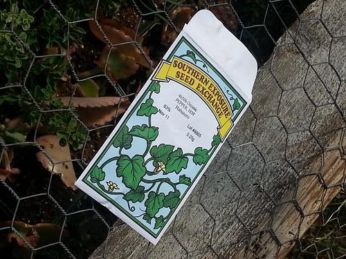 Biophilia: A Habernaro Pepper seed pack