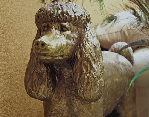 mummy dog