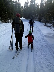 snowshoe, ski equipment, winter sport, footwear, winter, ski, skiing, piste, sports, recreation, snow, outdoor recreation, ski touring, cross-country skiing, nordic skiing,