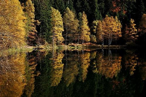 france nature automne lac lorraine