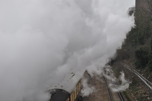 Enveloped by steam train