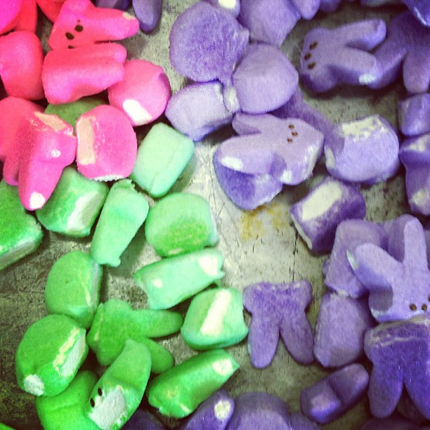 Just a normal Sunday snack of beheaded Peeps.