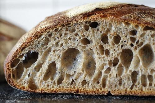 brödet jäser inte i ugnen