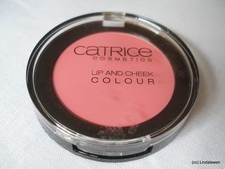 Colorete y labial 01 Discreet Artist de la colección Neo Geisha de Catrice
