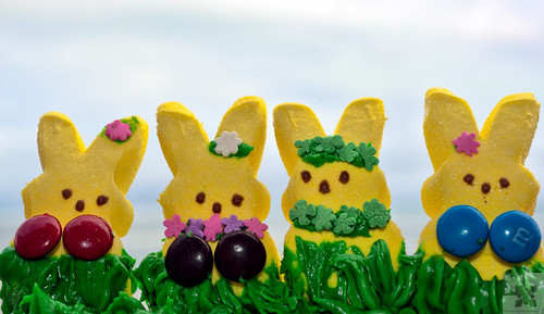 Hula Dancers from Peeps #Peeps #Hawaii #Photography