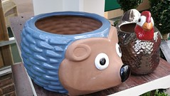 Notcutts Garden Centre - pots - hedghog and chicken