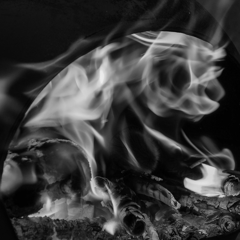 Failing Phoenix poetry stories