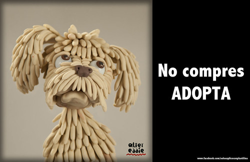 "No compres, ""adopta"" by alter eddie"