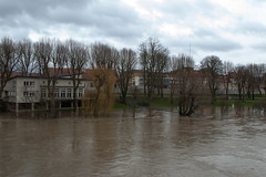 La Moselle - Vue depuis le Pont de Thionville