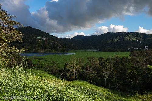 cloud lake tree verde green clouds lago flora nikon puertorico hill cielo nubes árbol pr nikkor nube loma trujilloalto d4 westindies greaterantilles 2470mmf28g antillasmayores isladesanjuanbautista carraízo lagoloíza 2013013111440