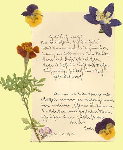 Poesiealbum Sütterlinschrift Erinnerung