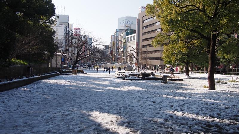 Tokyo Honeymoon 2013_day04_031