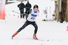 winter sport, nordic combined, individual sports, ski cross, skiing, sports, recreation, slalom skiing, cross-country skiing, downhill, telemark skiing, nordic skiing,