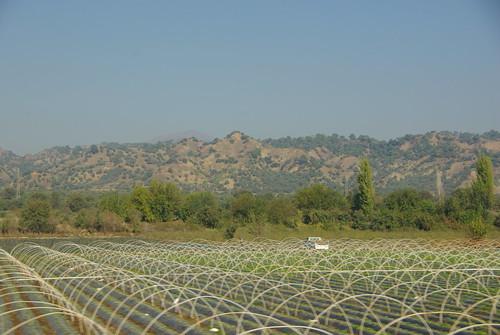 turkey countryside farmland hills crops shrubs