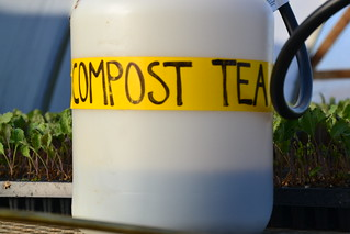 Our first time with Compost Tea | by Suzies Farm