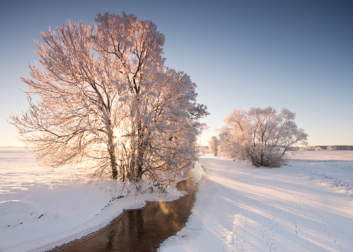 trees winter sun snow colour ice water backlight river landscape dawn stream day shadows sweden hoarfrost tripod bluesky nopeople explore scandinavia linköping sigma1020mm östergötland tracksinthesnow gndfilter vikingstad explored nordics graduatedneutraldensity lillån backlittree sonyalphaslta77