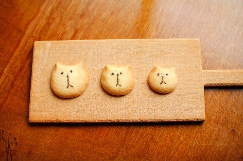 3 cat sisters cookie