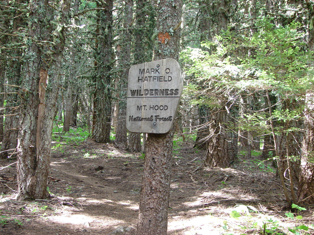 Mt. Defiance Trail entering the Mark O. Hatfield Wilderness