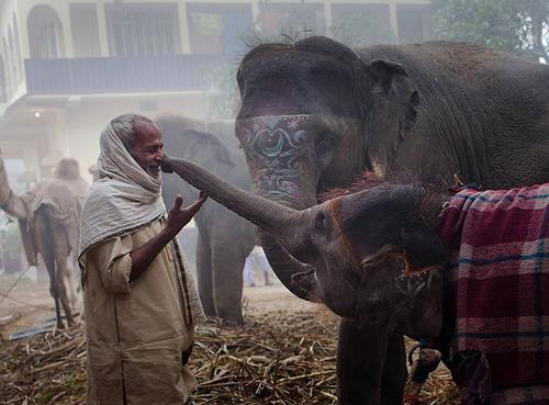 India Through Photo & Digital Art Vol. 2