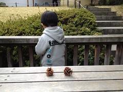 130324 代官山西郷山、菅刈、目黒川の桜