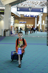 sequoia, finding gate c13 all by himself    MG 3671