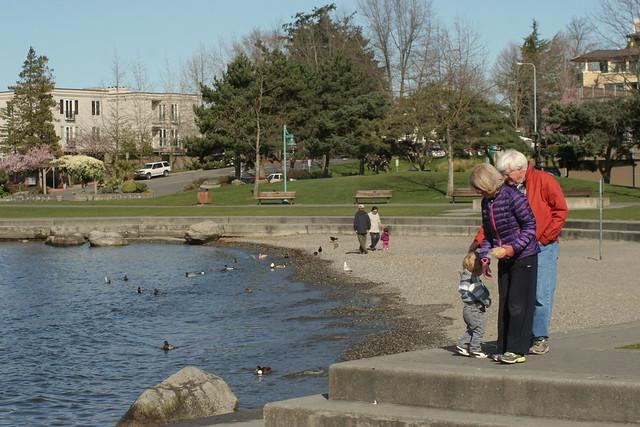 Marina Park - Kirkland WA