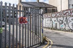 URBAN EXPRESSION AND SOME URBAN DEPRESSION [STREET ART IN THE PORTOBELLO AREA OF DUBLIN] A-121546