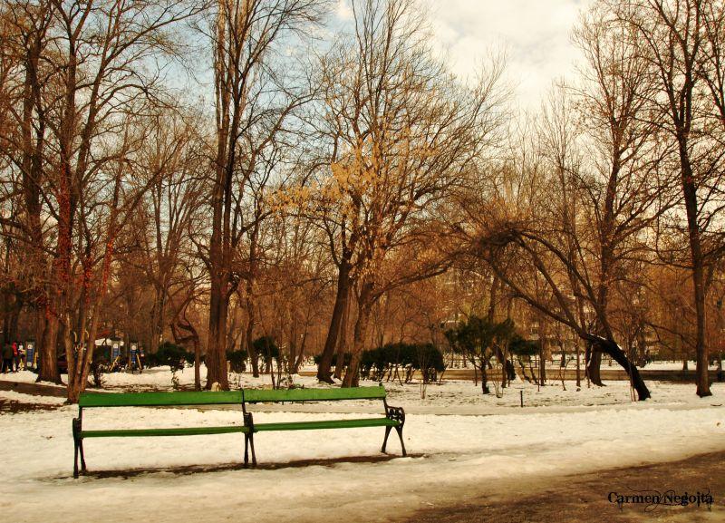 Bucuresti_Parcul Cismigiu_2