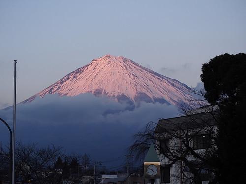 葡萄色の富士山 by leicadaisuki