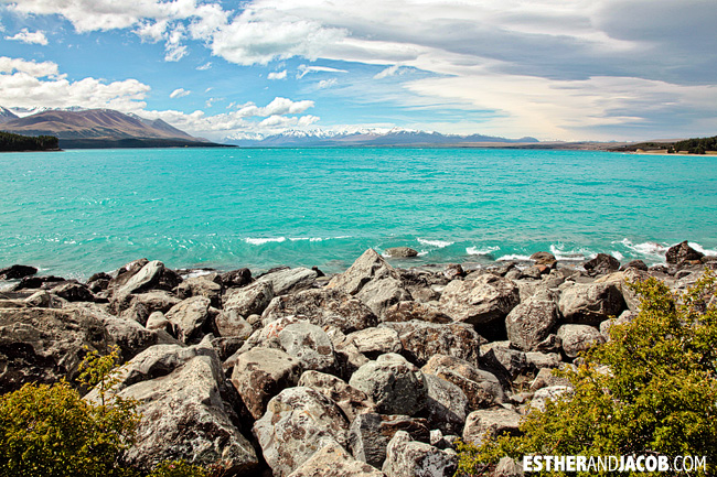 Lake Pukaki | Day 2 New Zealand Contiki Tour | Christchurch to Lake Ohau | A Guide to South Island