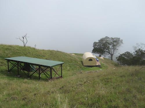 Camp at Nakula NAR.