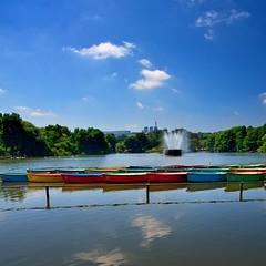 Boats on Zoo Lake