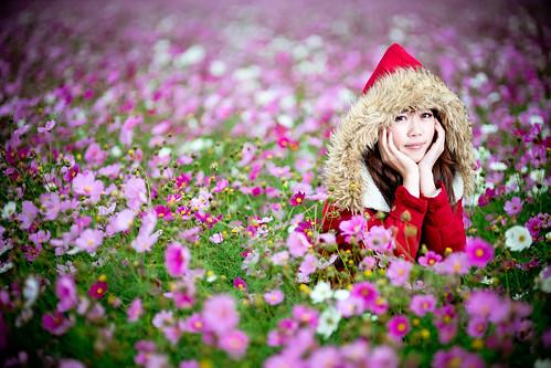 [フリー画像素材] 人物, 女性 - アジア, 台湾人, 人物 - 花・植物, 秋桜・コスモス ID:201302281800