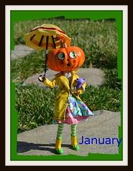 Calendar Girls 2013