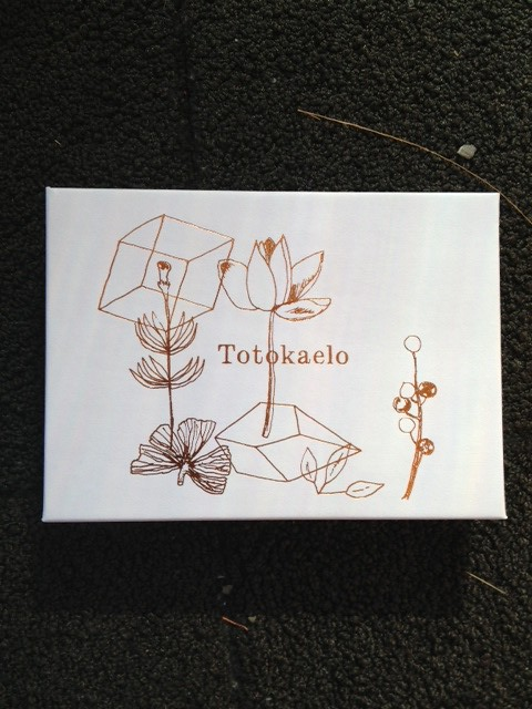 totokaelo package 3