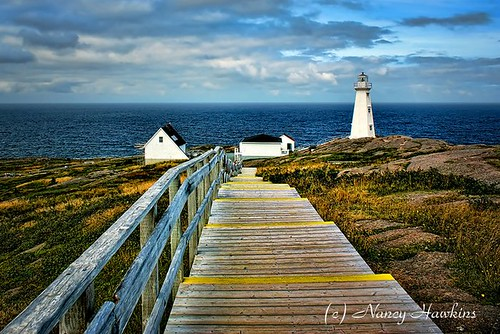 Looking out to sea by Nancy Hawkins