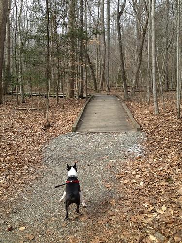 Charlie's First Trip to Poco Feb 2013 (78)
