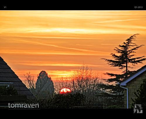 trees sunset england orange black bird nikon silhouettes v1 cheltenham tomraven aravenimage rememberthatmomentlevel1 rememberthatmomentlevel2 q12013
