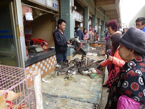 Guangdond-Guangzhou-Auberge-Quartier (25)