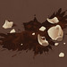 Coffee Spilled Owl by (ben chen)