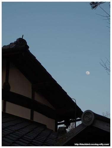 Moon #02