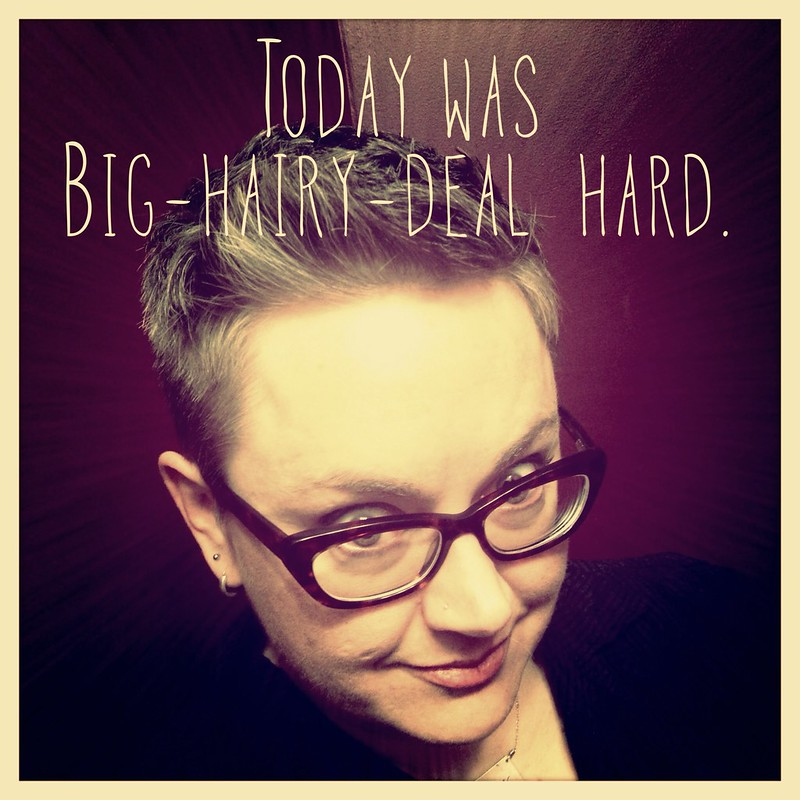 Big-Hairy-Deal Day Hard 1