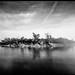 Eco Pond by keylargo_diver