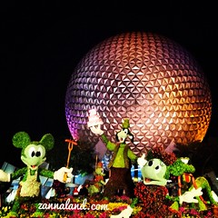 Epcot Flower & Garden Festival at night