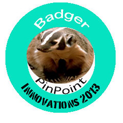 Image of Badger Badge