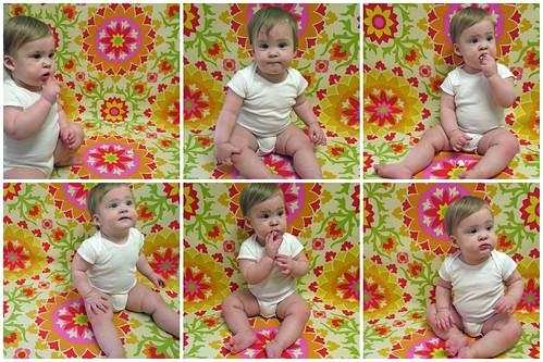 Twelve Months Collage