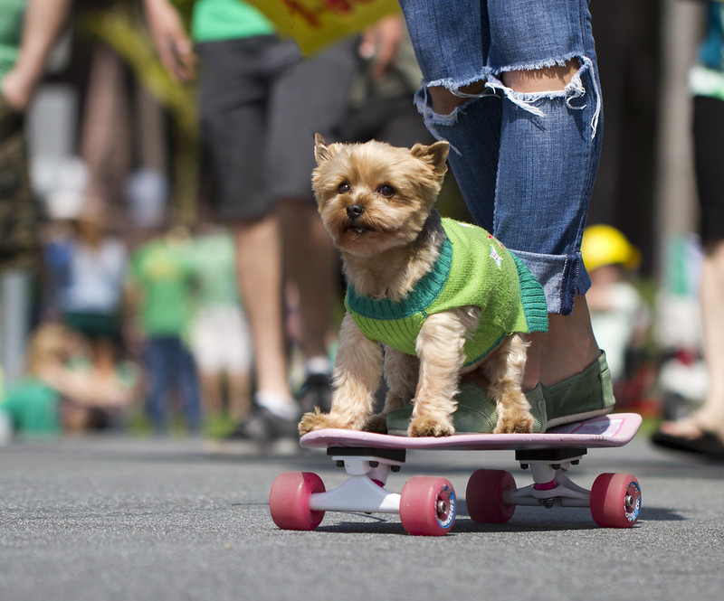 Skateboarding St. Patrick, San Diego, California
