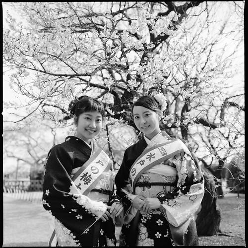Mito Plum Blossom Festival by ketchin