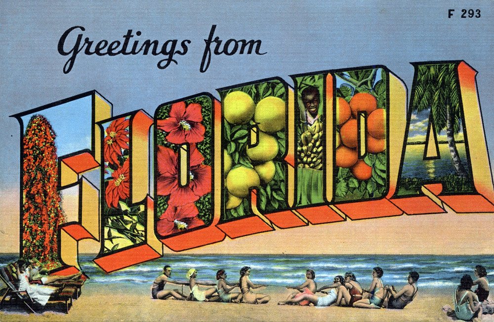 Greetings from florida large letter postcard a photo on flickriver greetings from florida large letter postcard m4hsunfo