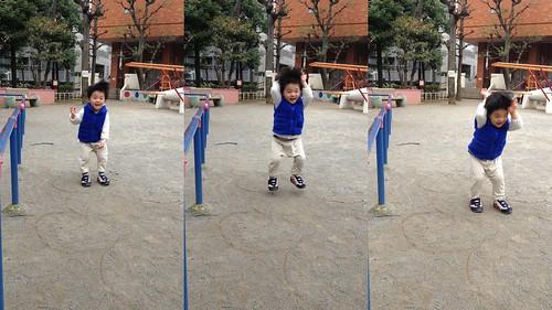 公園でジャンプするとらちゃん 2013/3/23